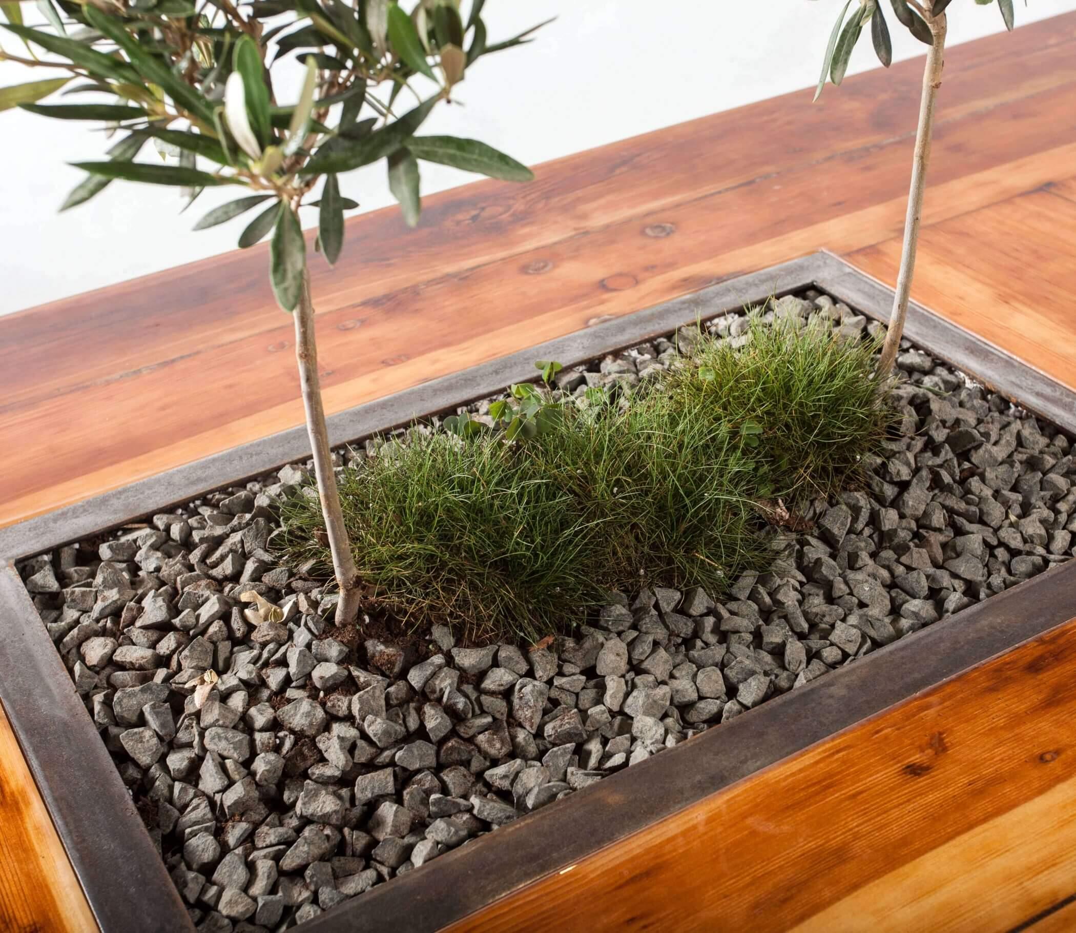 Stół oliwny